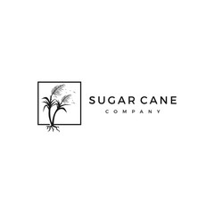 sugar cane logo vector icon illustration