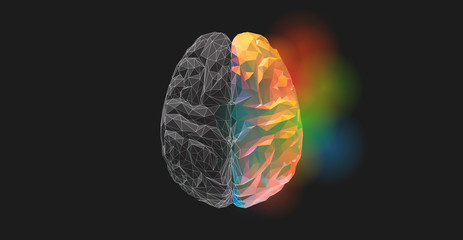 Low poly brain with gray on left and colorful or right
