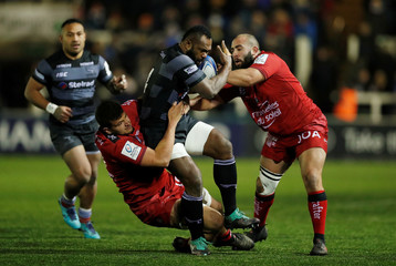 European Rugby Champions Cup - Newcastle Falcons v RC Toulon