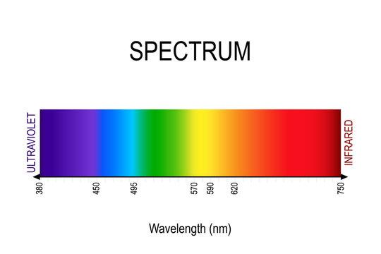 spectrum. visible light, infrared, and ultraviolet. electromagnetic radiation