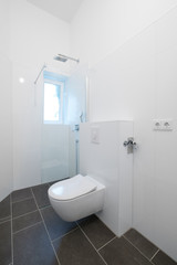 toilet and shower cubicle in newly renovated bathroom  -