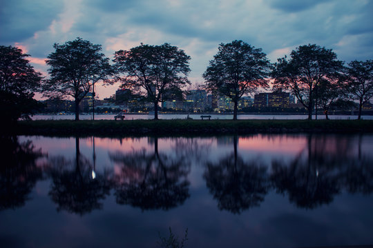 Silhouette of trees lining Boston Charles River at Sunset on a gloomy cloudy day