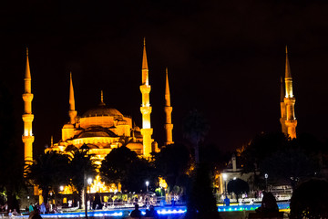 The illuminated Blue mosque during the night