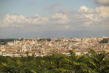 Roma, Italia: Vista aerea sui tetti e le chiese di Roma