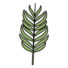 tropical leaf ecology icon