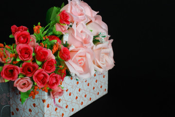 Photoshoot of flower rose for decoration Valentine day