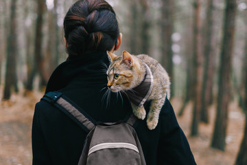 Kitten sitting on shoulder of woman in the forest.