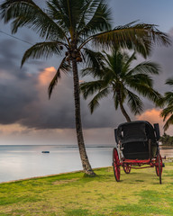 Tropical Sunrise with Island,  Palm Trees and Vintage Carriage