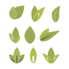 set of green leaves. vector illustration on white background