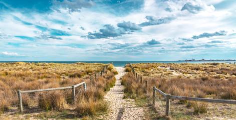 A sandy path
