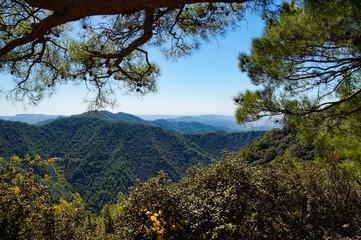 mountains, blue, sky, expanse, distance, horizon, plants, forest, trees, nature, landscape, excursion, walk, journey