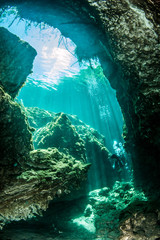 Scuba diving in the Casa Cenote, Tulum, Mexico