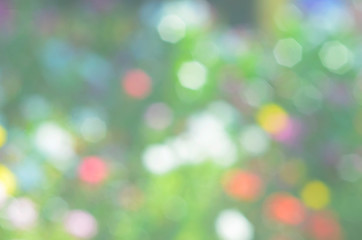 Romantic Bokeh sunlight backgrounds with flower plant
