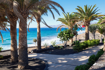 Papiers peints Plage Puerto del Carmen beach in Lanzarote, Canary islands, Spain. blue sea, palm trees, selective focus