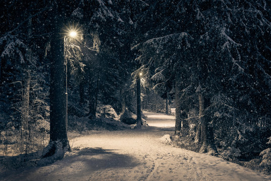 Moody landscape with snow path and light at winter evening in Finland