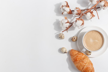 A branch of cotton and a cup of coffee with milk on a light background. Top view. Copy space.