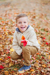 happy cute little boy in autumn park among fallen leaves