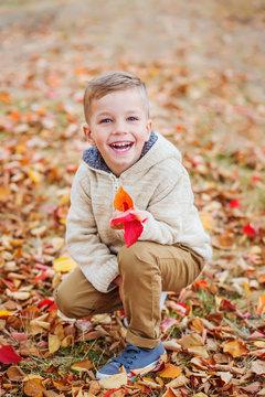 happy cute little boy in autumn park among fallen leaves