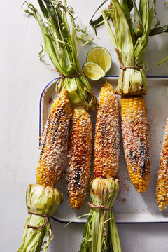 Overhead view of grilled corncobs on tray