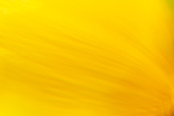 Flow speed yellow abstract modern card design