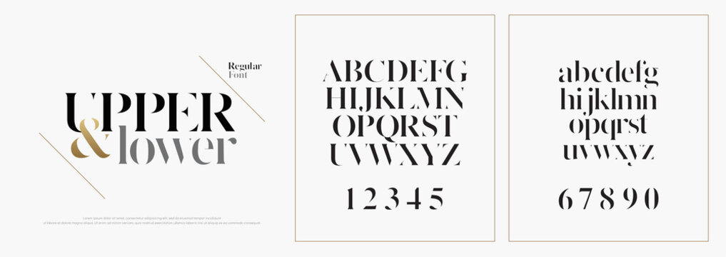 Elegant alphabet letters font set. Classic Custom Lettering Designs for logo, Poster. Typography fonts classic style, regular uppercase, lowercase and number. vector illustration