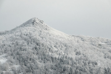 Winter mountain landscape against a gray sky