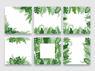 Wall Mural - Exotic leaves frame. Tropical leaf border, nature summer frames and luxury palm leaves borders vector design background set