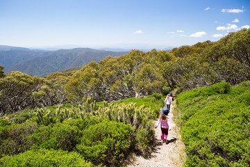 Deurstickers Oceanië Mount Buller Walking and Biking Trails in Summer