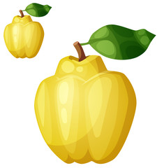 Quince fruit. Cartoon vector icon isolated