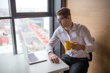 Young intelligent caucasian male financier trainee dressed in white shirt sitting at office, holding cup of tea, reading documents with concentrated attentive expression, looking at laptop.