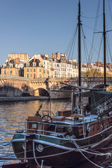 Fototapete - Seine river in Paris, France