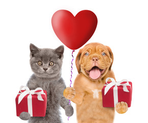 Kitten and puppy with heart shaped balloon and gifts. isolated on white background