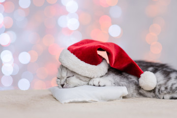 Cute kitten in red christmas hat sleep on pillow on festive background. Empty space for text