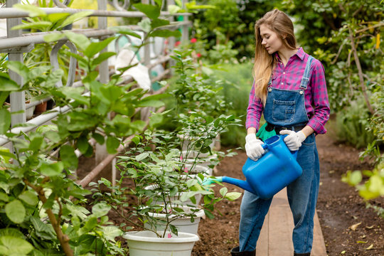 hardworking girl using water can during working in the greenhouse. copy space. interest,free time activity
