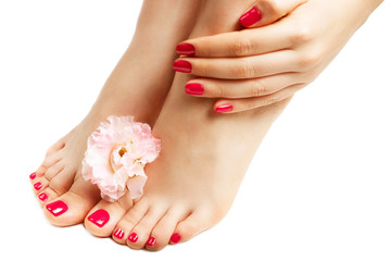 Wall Murals Pedicure Red manicure and pedicure with flower close up, isolated on white background