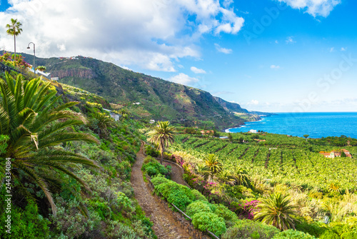 Wall mural Landscape with North Tenerife coast, Canary island, Spain