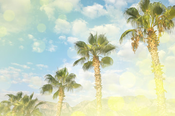 Tropical landscape with green palms and mountains and cloudy sky in summer day.