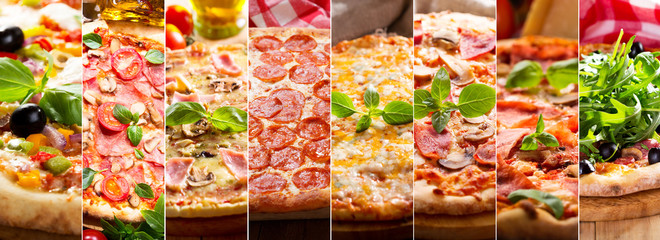 Wall Mural - collage of various types of pizza
