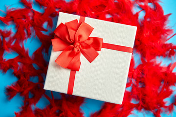 Box with a gift, tied with a ribbon placed on red feathers. Top view, close-up, flat lay, isolated blue background. Concept for Valentine's Day