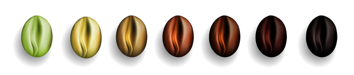 Various Stages of Coffee Beans Roasted from Green to Dark Brown