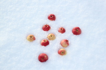 Red apples on snow