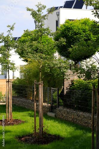 Moderne Gartengestaltung Mit Steinen Gefullte Gabionen Als Zaun Und