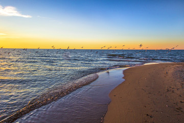 Sunset Beach Background. Seagulls over the blue waters of Lake Michigan with a gorgeous golden sunset at the horizon in Muskegon, Michigan.