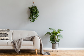 Minimalistic home interior with grey  design sofa,  tropical plants and elegant accessories. Copy space for inscription, mock up poster. Brown wooden parquet. Concept of stylish home interior.