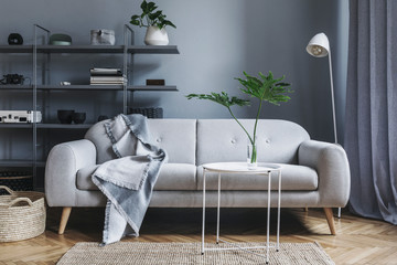 Modern nordic living room with design sofa with elegant blanket, coffee table,white lamp and bookstand on the grey wall. Brown wooden parquet. Concept of minimalistic interior.