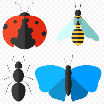 A set of four simple insects - a ladybug, an ant, a butterfly and a bee. Isolated vector illustration on a transparent background