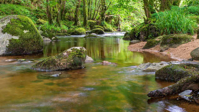 Long exposure landscape with a river flowing and rocks covered in green moss. Tranquil forest scene in Wicklow Mountains ,Ireland, with Glencree River slow moving through green trees.