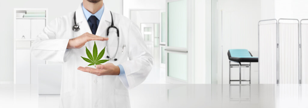 hands doctor with marijuana medical cannabis icon with the clinic in the background, copy space and web banner template