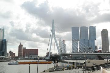 Deurstickers Rotterdam erasmus bridge, rotterdam