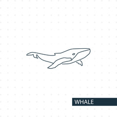 whale line icon